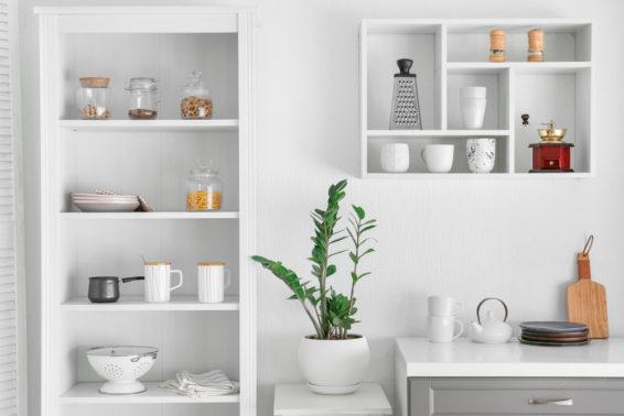 Items on kitchen shelves arranged neatly